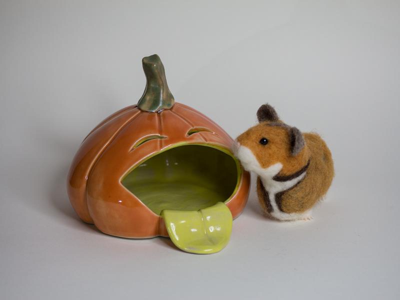 Hamsterversteck Kürbis