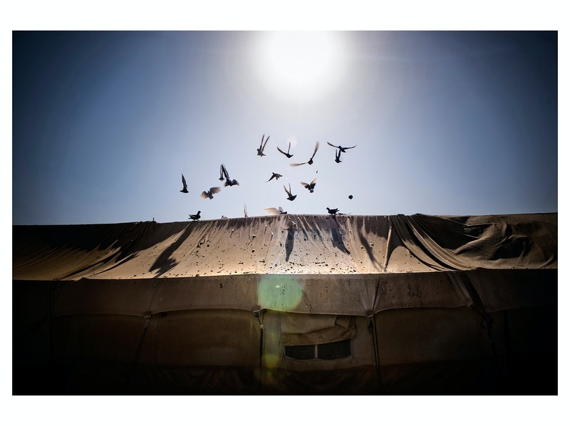 In No man's Land. Al Tanf Refugee Camp - Numbered Prints Series