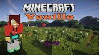 Vanilla Minecraft Server L