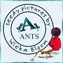 Ants by Wieka Bloom
